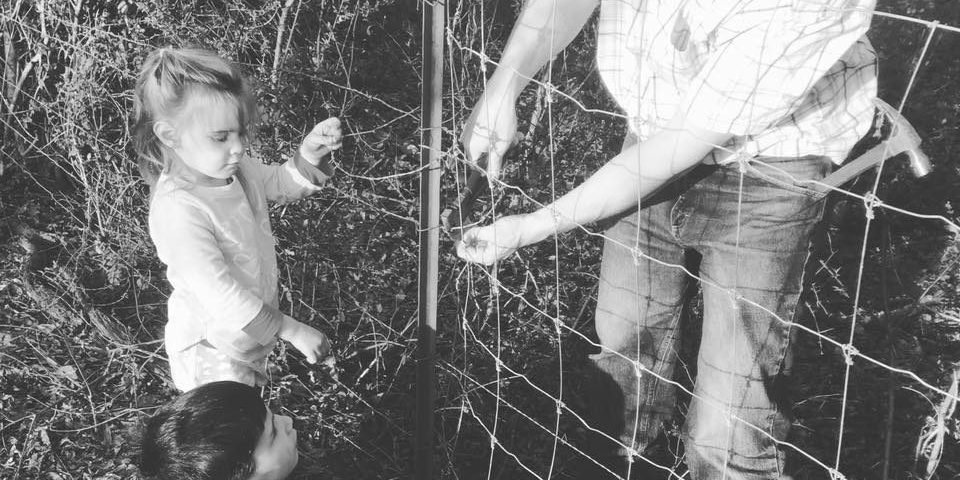 fixing fences 3
